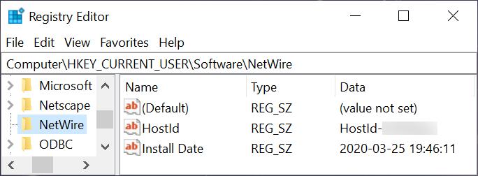 Figure 13. Windows Registry update for NetWire