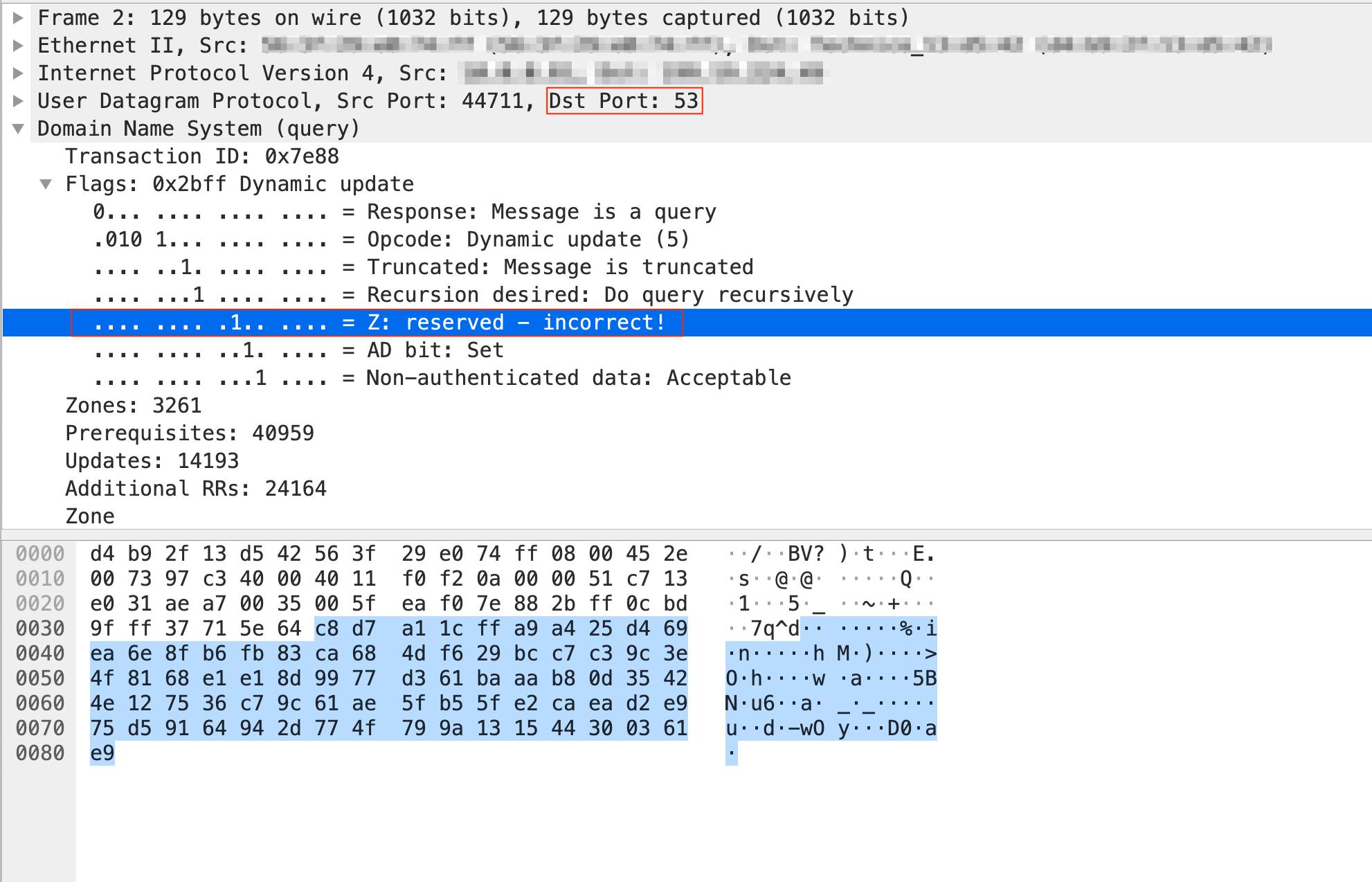 Thunder VPNから送られてくるポート53のUDPトラフィックを示した図